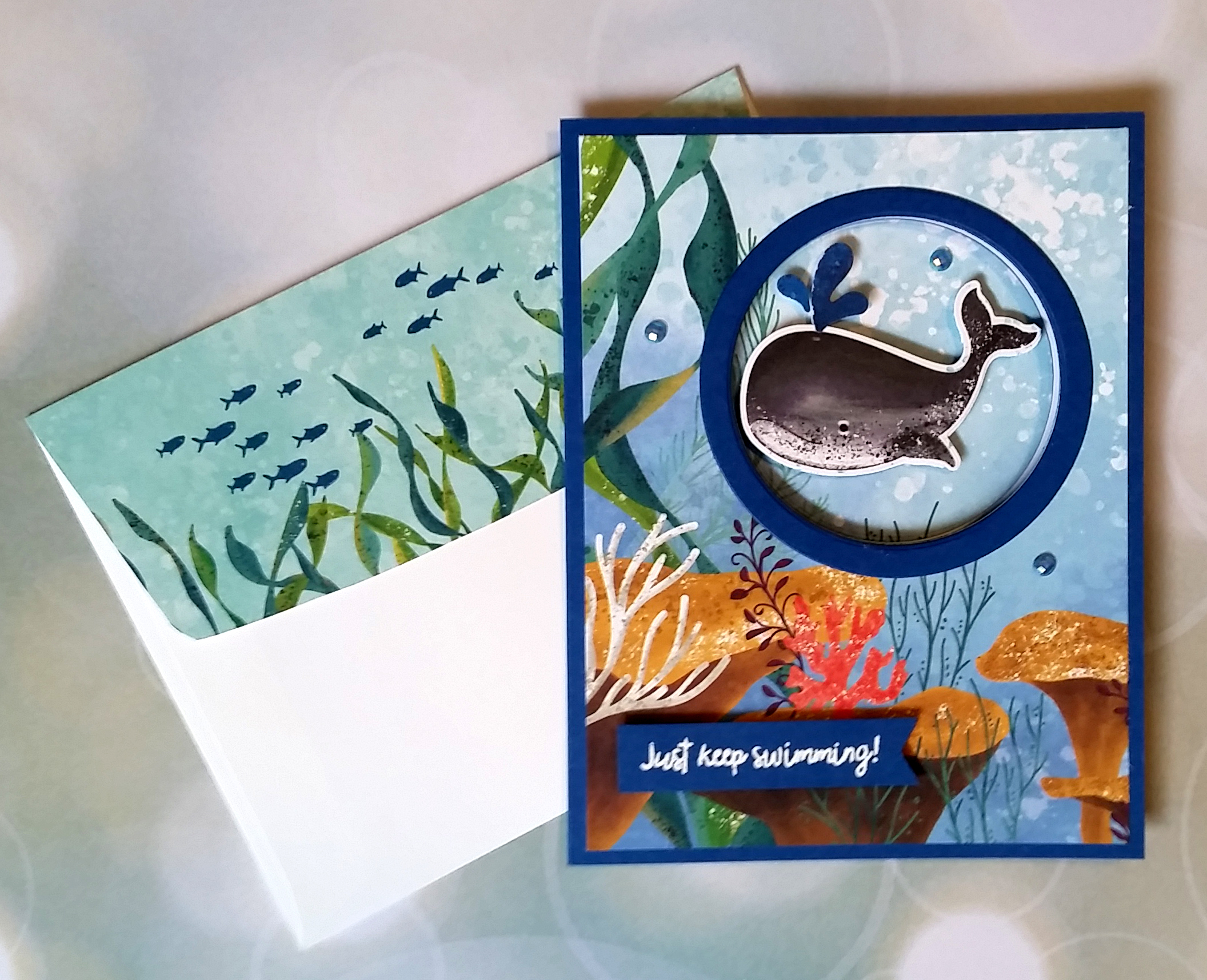 Whale Cards 4B